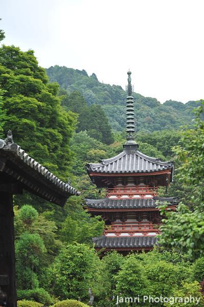 Towards the Pagoda.