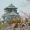 Behind the Sakura.<br /> Osaka Castle.