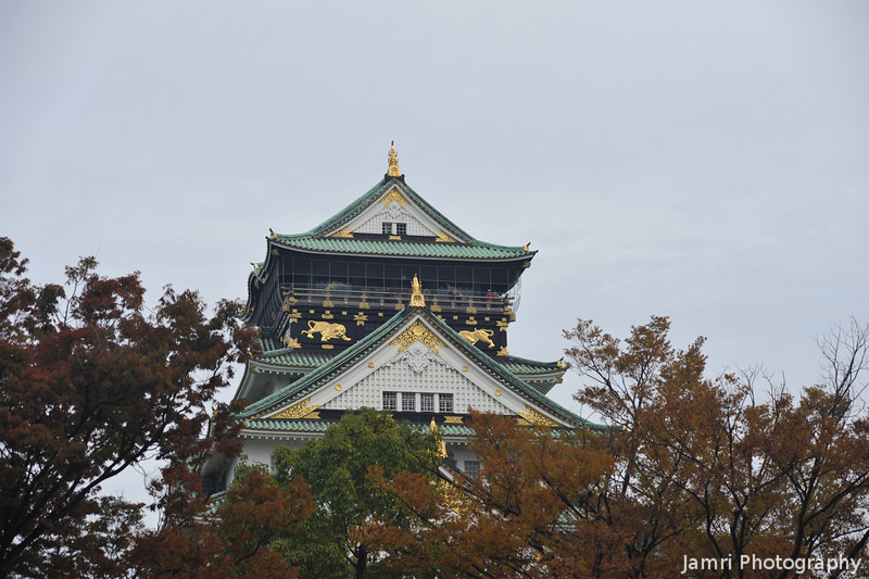 Over the tree tops.<br /> Osaka Castle.