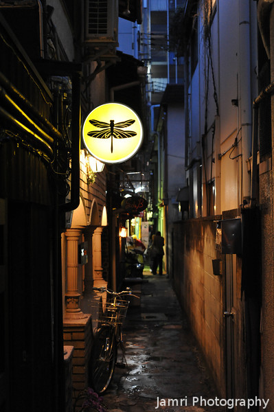 Dragonfly Sign in an Alleyway.<br /> Off Pontocho, in Kyoto.