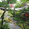 View to the Pond Area.<br /> At Youkoku-ji (a Buddhist Temple) in Nagaokakyo.