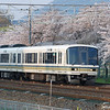White Train and Sakura.