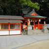 Little Shrine.<br /> At Ikuta Shrine in Kobe.