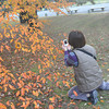 Ritsuko Shooting the Autumn Colours.<br /> She's starting to get the photography bug, but not as much as me yet!
