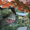 Traditional Pathway.<br /> Some of the restaurant buildings in Nagaokakyo Tenmangu Shrine Park.