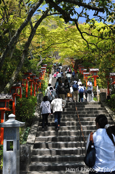 The Crowds at Kurama.<br /> It was a public holiday, so it was crowded, but a apparently on non holidays being a bit out of town means that it does get so many people as some of the attractions in town.<br /> Note: Circular Polarising Filter Used.