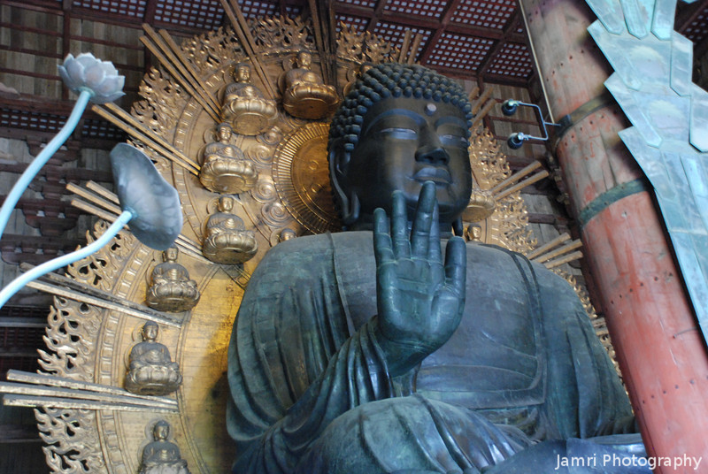 Daibutsu (The Big Buddha) 1.<br /> This is the biggest statue of Buddha in Japan, it's so big that a slim person can fit into his nostril! There's a hole cut into a pillar in another part of the temple which is the same size. People try to squeeze through, thinking they be granted a wish if they can pass through Buddha's nostril!