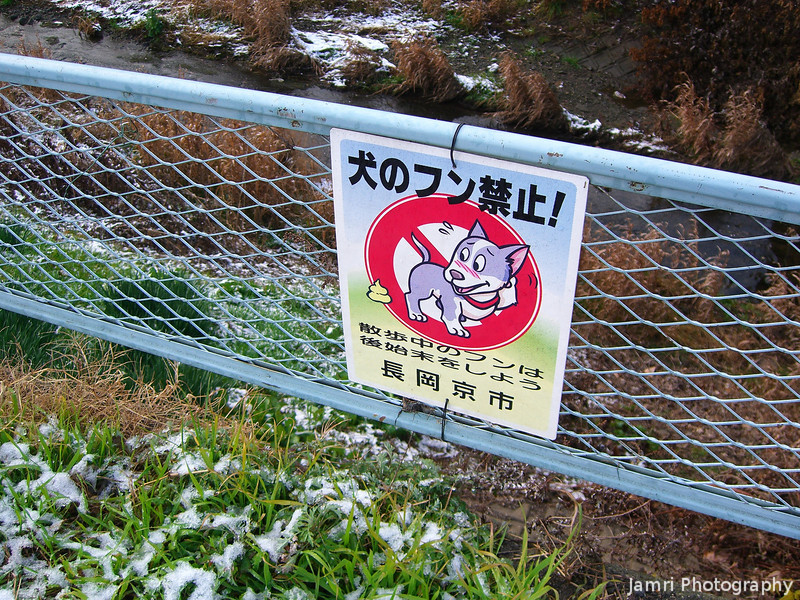Doggy Don't!<br /> Gotta love the cutesy signs they have for everything in Japan.