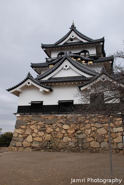 Hikone Castle Side View.