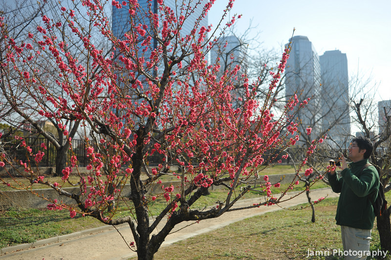 Photography at the Park.<br /> Nothing like the spring blooms to bring out the photographers.