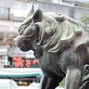 Guardian Lion.<br /> Outside the Gates of Yasaka-jinja (Yasaka Shrine) in Gion, Kyoto.