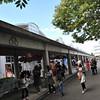 Enjoying the Open Day.<br /> At Osaka Seikei University (Nagaokakyo Campus).