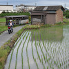 Rural Scenery in Nagaokakyo City.<br /> With all of the concreting of Japan, it's good to see that there are still pockets of rural like areas within cities. Maybe other countries could learn from this.