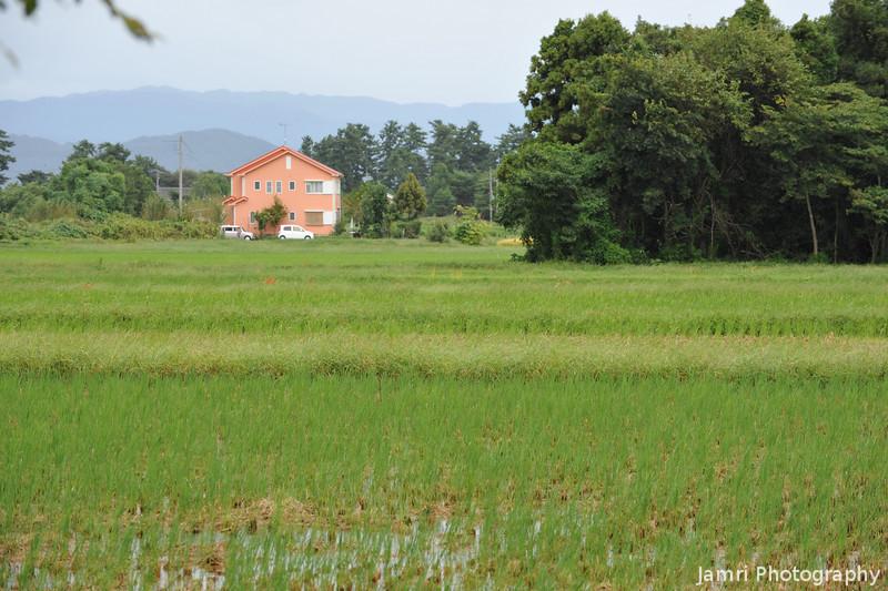 Across a few fields.