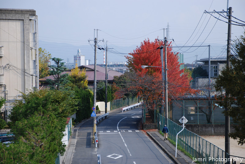 """Down the road A view of the east side of Nagaokakyo from the railway foot bridge taken in between <A href=""""http://jamri.smugmug.com/Trains/Trains/"""">Trains</A>."""