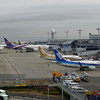 Back at Kansai Airport.<br /> I went out Kansai Airport to see Dave off.