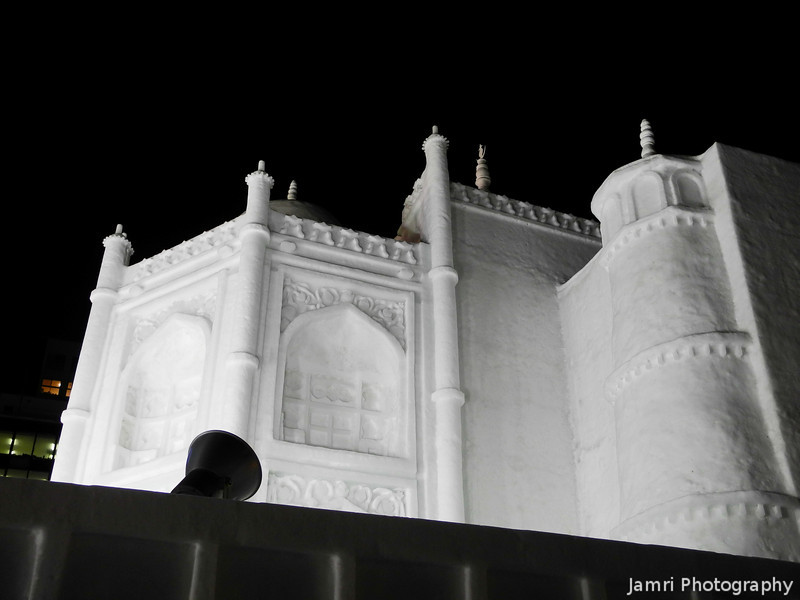 Taj Mahal Detail.