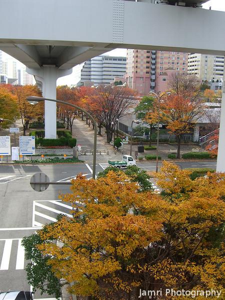 Colour under the Bridge<br /> Some Autumn colour under a Bridge in Roko Island (near Kobe).