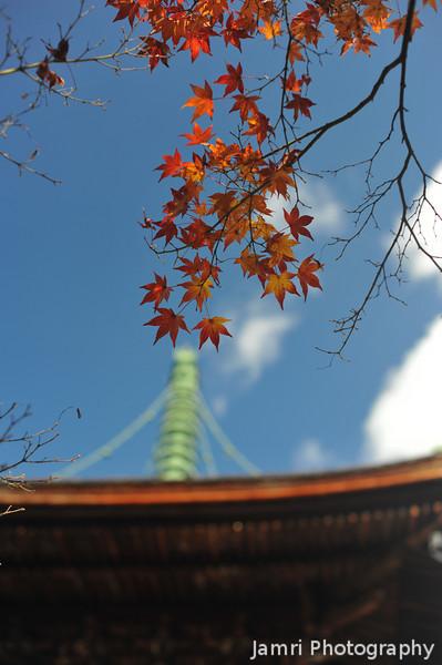 Maple Leaves and the Top of the Pagoda.<br /> At Jojakko-ji (Jojakko Temple), Arashiyama, Japan.