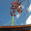 Maple Leaves and the Top of the Pagoda.<br /> At Jojakko-ji (Jojakko Temple), Arashiyama, Japan.