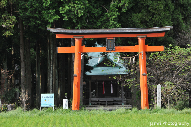 Tsuno Shrine.<br /> Omi-Imazu, Shiga Prefecture, Japan.