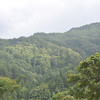 The top of the hill on the other side of the valley.<br /> From Aburamu no sato (Abram's place) near Hida Furukawa, Gifu Prefecture, Japan.
