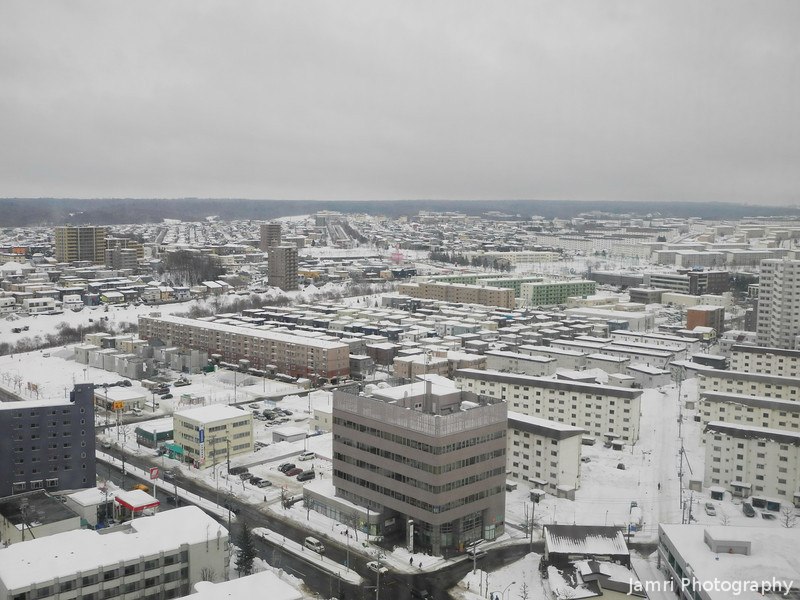 A View of Shinsapporo.<br /> From the room I was staying in the Sapporo Sheraton Hotel.