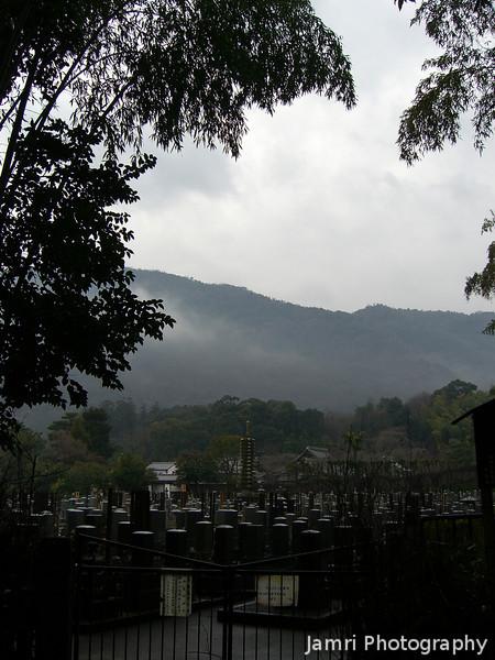 Arashiyama from a high point.