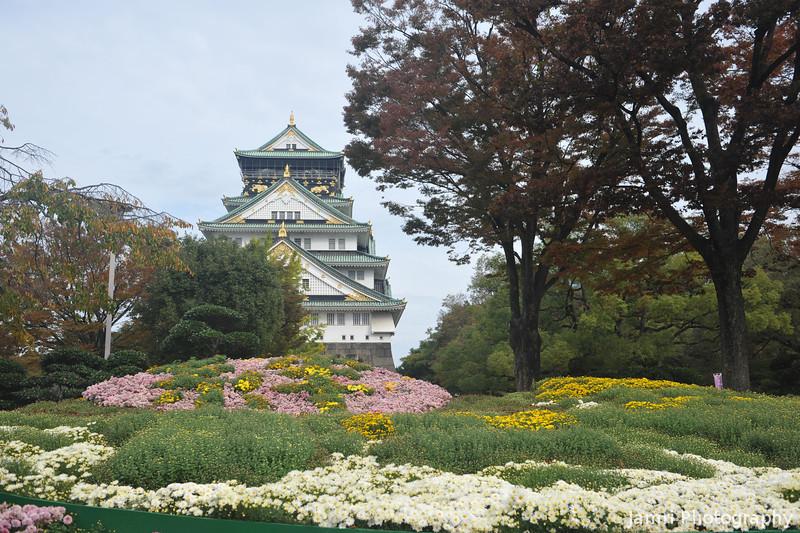Osaka-jo and Chrysanthemums.