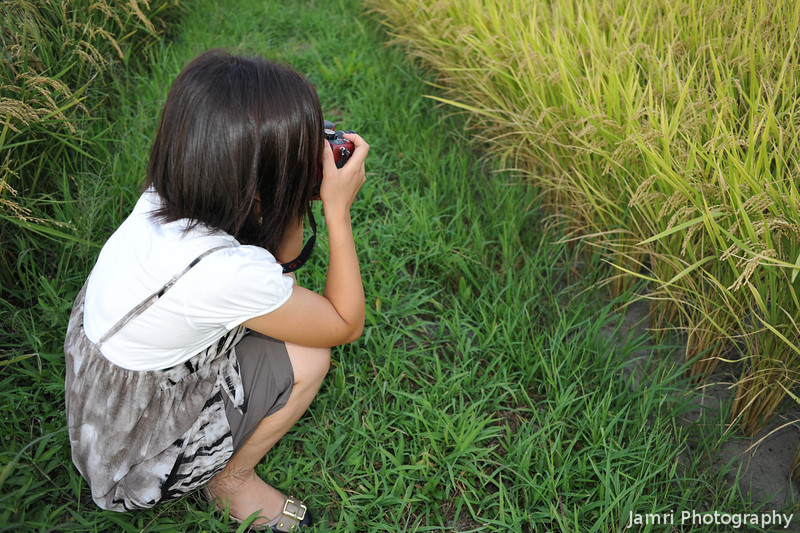 Emi in between the rice fields.<br /> During our photo workshop field trip.