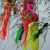 "Colourful Tangles. Some of the <A href=""http://en.wikipedia.org/wiki/Tanabata"">Tanabata Festival</A> decorations."