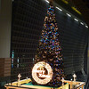 The Big Tree.<br /> At Kyoto Station.<br /> Photo by Ritsuko.