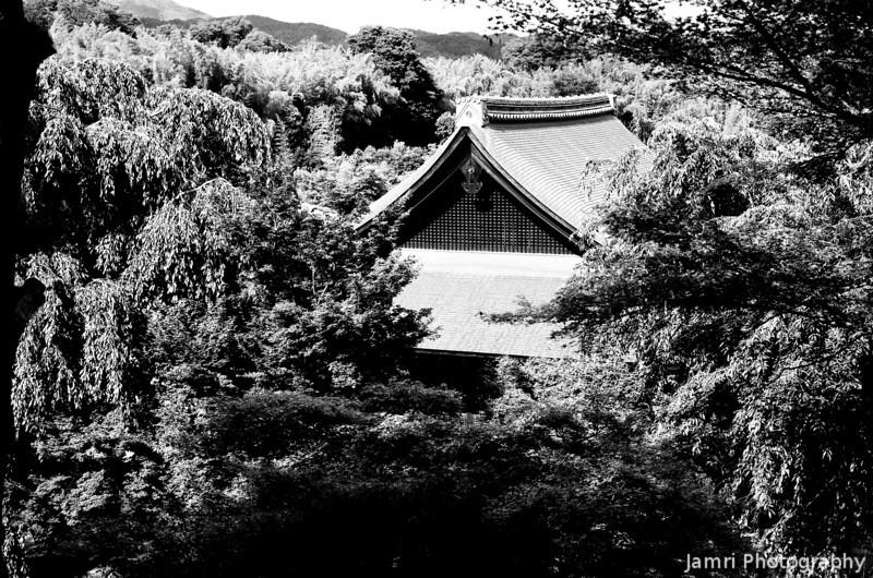In amongst the treetops.<br /> A temple building roof at Tenryu-ji, Arashiyama, Kyoto.<br /> Note Film Shot: Nikon F80 + 50f/1.8 + Orange Filter + Fujifilm Neopan Acros