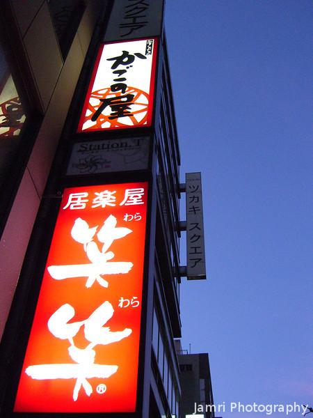 Vivid Signs.<br /> A long Karasuma Dori.