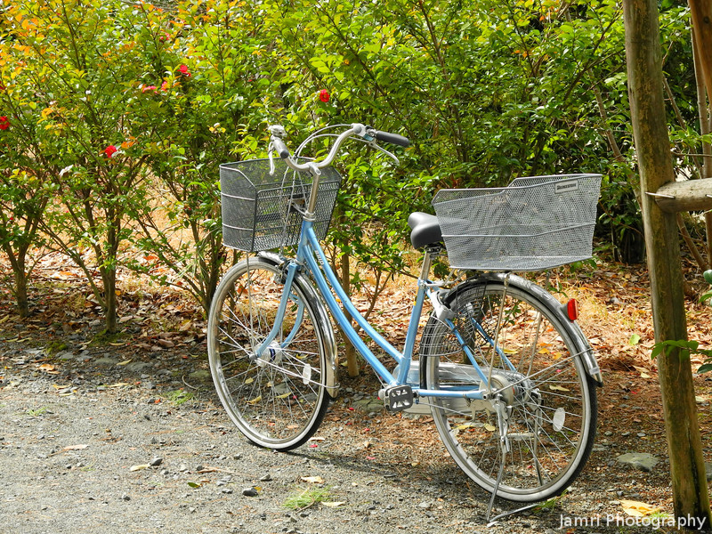 """Ritsuko's Bicycle. <a href=""""http://jamri.smugmug.com/Other/My-New-Life/9777122_2MxcC8#!i=1172888053&k=uuwYA"""">I photographed mine over a year ago</A>, but I didn't have a good shot of Ritsuko's lovely blue bike."""