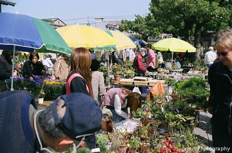 "At the flea market.<br /> A flea market is held at Toji (lit ""East Temple"") every 21st of the month.<br /> Note Film Shot: Nikon F80 + Nikkor AF 35 f/2 + Circular Polariser + Fujicolor PRO400"