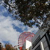 The Hep 5 Ferris Wheel as seen through the trees.<br /> Two of the very few trees in this part of Osaka.