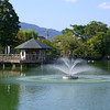 The Fountain is Activated.<br /> During all the times that I've been to Nagaoka Tenmangu Shrine Park, this was the first time I saw the fountain working. This was the time that I brought my parents there.
