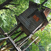 The Tree House.<br /> Great fun for the kids.<br /> At Aburamu no sato (Abram's place) near Hida Furukawa, Gifu Prefecture, Japan.