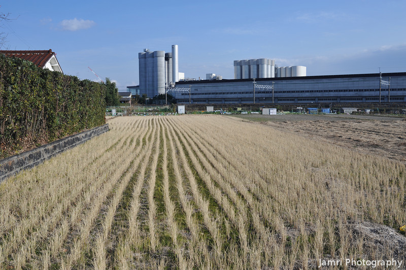 Wintery Field.<br /> Towards the Suntory Brewery, where they make the Suntory Premium Malts.