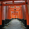 The Torii Tunnel Continues.