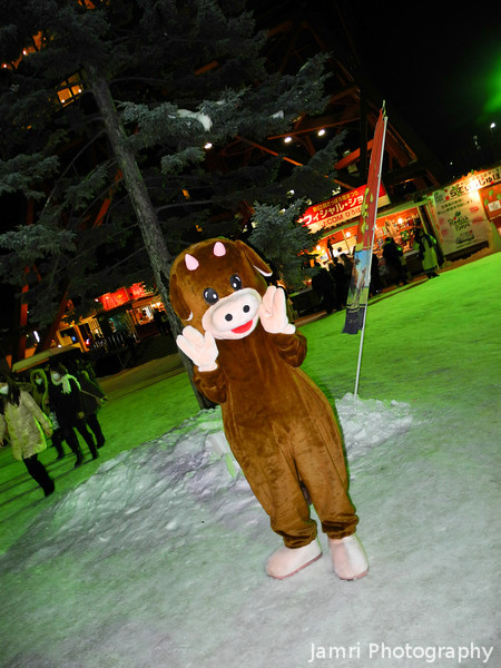 Always a friendly creature around in Japan.<br /> Even at the Snow Festival.