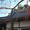 Temple Building and Maple Leaves.<br /> At Jojakko-ji (Jojakko Temple), Arashiyama, Japan.