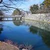 The Castle Moat.<br /> At Hikone, Shiga Prefecture.