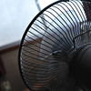 Fan, one point of view.