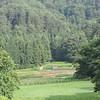 Into the valley.<br /> From Aburamu no sato (Abram's place) near Hida Furukawa, Gifu Prefecture, Japan.
