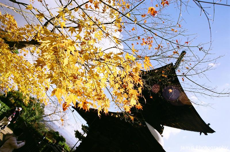 On the Dark Side of the Pagoda.<br /> Note: Film Shot, Nikon F80 + 24f/2.8mm + Fujicolor Reala ACE 100.