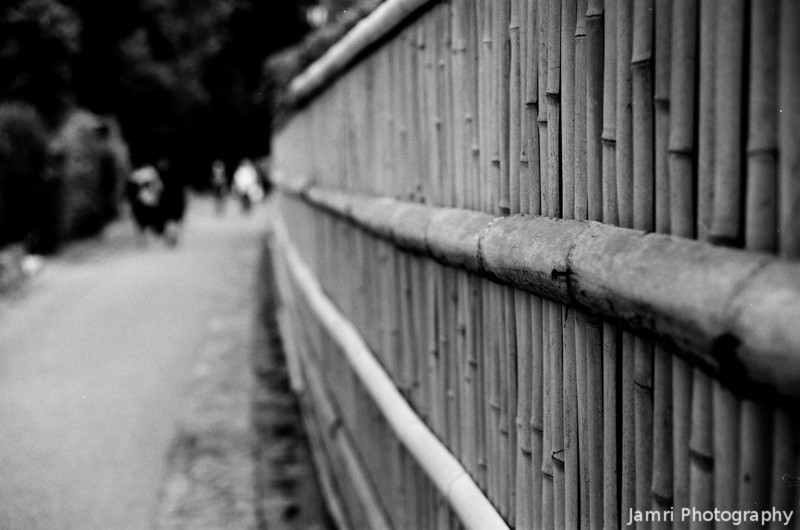 Along a wall.<br /> A bit more low contrast than some of the others, probably work better in colour, but I still like it for some reason.<br /> Note Film Shot: Nikon F80 + 50f/1.8 + Orange Filter + Fujifilm Neopan Acros