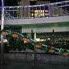 Christmas Lights in the Garden.<br /> At Sannomiya Station, in Kobe.