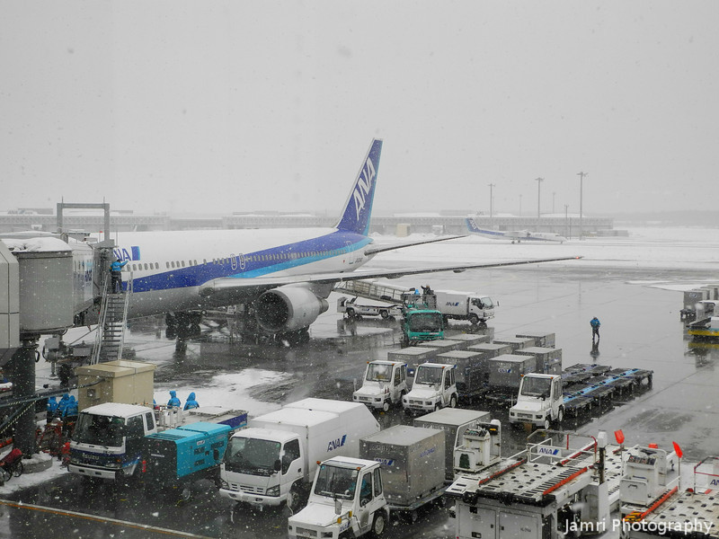 Looking back at my ride.<br /> After disembarking at New Chitose Airport in Hokkaido.